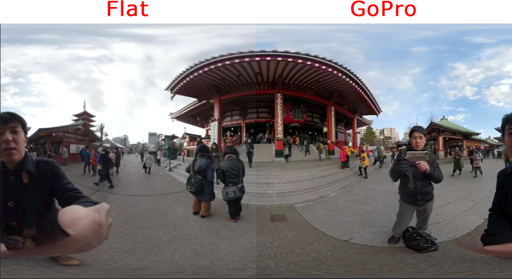 GoPro Fusion_Color設定