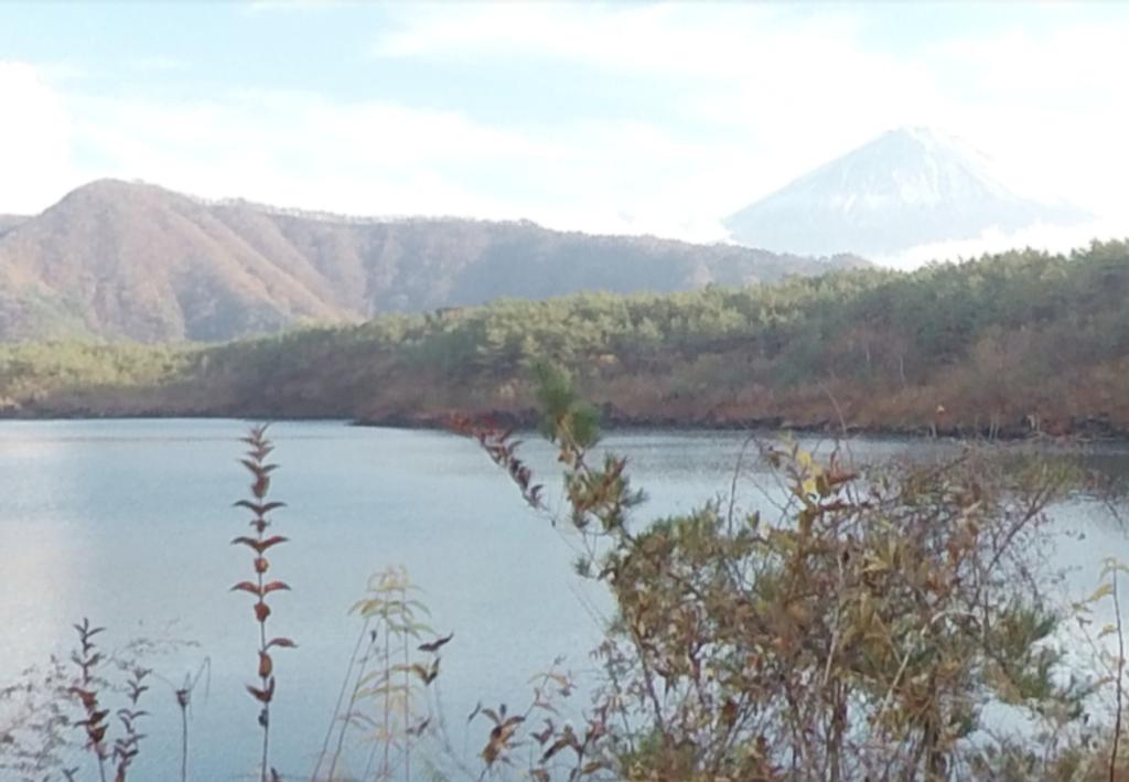 アイキャッチ_西湖