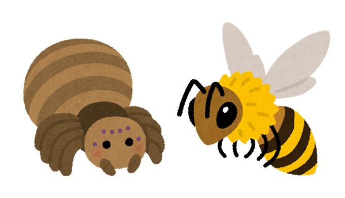 2種類の営業方法「ミツバチ」と「クモの巣」